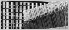 Stockholm; Congress Centre (drasphotography) Tags: stockholm congress centre sweden schweden sverige kongresshalle kongress architecture architektur monochrome monochromatic monotone blackandwhite bw bianconero schwarzweis sw windows nikond7000 d7k drasphotography geometry geometrisch geometric