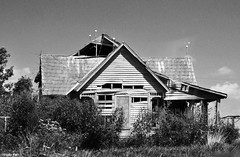 Here is gone (Jake (Studio 9265)) Tags: indiana usa united states america fall 2016 nikon d5000 september outdoor photography abandoned house home decay disrepair broken old overgrowth overgrown sad decatur county black white
