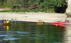 2015-07-31 39 Altmhltour, Etappe 5, Donau (kaianderkiste) Tags: germany bayern bavaria altmhltal donau paddeln paddler ufer strand beach