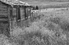 Lonesome Prairie (catmccray) Tags: abandoned prairie colorado