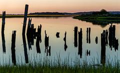 Wharf Posts and Shadows - Boston South Shore (JohnColeUSA) Tags: bostonsouthshore waterfront coast coastal wharfposts serene reflection earlymorning dawn water bay