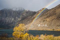 Rainbow after winter storm (Stanleybearshen) Tags: easternsierra rainbow winterstorm fall fallfoliage mammothlake joyholiday
