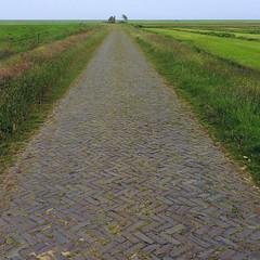 Terschellinger polder (Ger Veuger) Tags: vierkant square landschap landscape vierkantlandschap squarelandscape terschelling dutchlandscape hollandslandschap polder dijk weg dike road