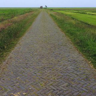 Terschellinger polder