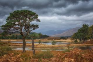 Autumn colours of Loch Tulla
