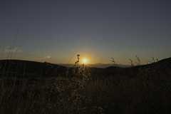 Sunsset in Big Bend (1 of 1)