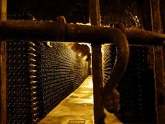 Segura Viudas , cava (52) (calafellvalo) Tags: seguraviudascavatorrelavitbarcelonasadurnãbodegacellarcalafellvalocavatast cavas seguraviudas heredadseguraviudas torrelavit barcelona paísdelcava calafellvalo santsadurnídanoia viñas bodegas penedès espumosos vino catalonia spain enoturismo masía cellar wine vineysrd vine grape