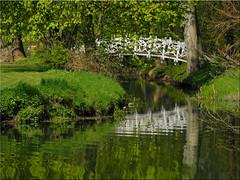 Reflections (Ostseetroll) Tags: deu deutschland eutin geo:lat=5413361322 geo:lon=1062410653 geotagged schleswigholstein spiegelungen reflections wasser water