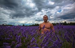SUMMER (Rober1000x) Tags: london londres 2016 summer lavander field sky storm uk europa europe purple nature man