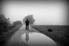 uomo, smartphone e cane (pianlux) Tags: bw uomo smartphone cane campagna riflesso solo inpiedi pozzanghera riflette back dispalle dietro campi foschia ottobre nebbioso bruma