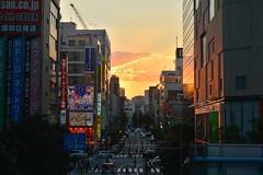 2014913  akihabara akiba (PhotoAkiba) Tags: japan tokyo   akihabara akiba   electrictown     2014