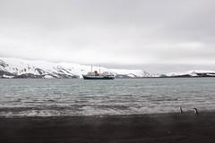 IMG_7681 (amdibene) Tags: green antarctica