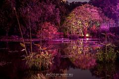 IMG_0239 (MARY WU IN TAIWAN) Tags: life road city sky sun building tree station museum night dawn nightscape taiwan  taichung           aloft