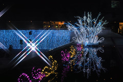 Water reflection at Lalaport Toyosu -Winter Illumination 2014-2015 (Toyosu, Tokyo, Japan) (t-mizo) Tags: christmas xmas light japan night tokyo illumination sigma    merrill foveon  lalaport  toyosu dp2  koutou spp  koutouku    lalaporttoyosu sigmaphotopro dp2m dp2merrill