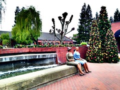Holidays at The Pavilions (fennelgrl) Tags: uploaded:by=flickrmobile colorvibefilter flickriosapp:filter=colorvibe