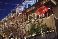 Maryland Christmas (Karol A Olson) Tags: christmas decorations maryland crab baltimore hampden dec14 miracleon34thstreet