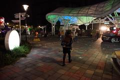 DSC_3166 (ppeng@yahoo) Tags: night nikon taipei 台北 2470 d810 taipeichildrensamusementpark 兒童新樂園 台北兒童新樂園