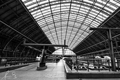 St Pancras Eurostar Terminal London (sachman75) Tags: uk england building london architecture train britishisles unitedkingdom transport wideangle terminal trainstation transportation canon1740mmf4 stpancrasstation sonya7r