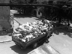 Camin de la basura (sabelamartinez) Tags: basura vacaciones pobreza camin repblicadominicana sancristbal