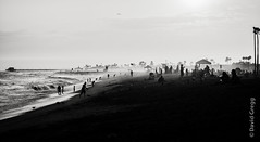 end of a summer's day (Monochrome) (Man in the Road) Tags: ocean travel sunset people blackandwhite bw outdoors sand waves shoreline silhouettes sunny newportbeach pacificocean orangesky southerncalifornia orangecounty crowded eveninglight greyscale coastaltown balboabeach sunworshippers filmeffect sceniclandscape vacationspot manintheroad nikond800 davidgregg analogefexpro