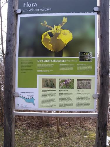 20150219_119_Wienerwaldsee (Large)