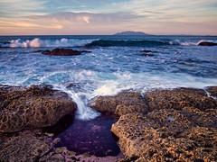 Splash pool (loveexploring) Tags: sunset newzealand rock wave pacificocean barnacles splash intertidalzone tidepool rodney greatbarrierisland haurakigulf tawharanui gndfilter littlebarrierisland rockshelf aucklandarea