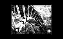 "Wooden bridge (karakutaia) Tags: sun tree love nature japan paper temple tokyo heart afotando ""flickraward"" flickrglobal allbeautifulshotsandmanymoreilovenature flowerstampblackandwhite transeguzkilorestreetarturbanagreatshotthisisexcellentcontestmovementricohgxr""serendipitygroupbluenatureicapturecardjapanesepapercardflickraward5""j trasognoerealtabstractelementsorganizersimplysuperb"