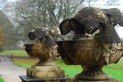 Stone eagles, Stourhead (Forest Pines) Tags: sculpture bird stone garden estate eagle nt stourhead wiltshire nationaltrust countryhouse