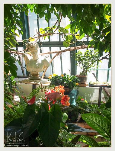 NOE, Stift Klosterneuburg Gaerten: orangerie | 2014-06