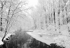 Lawrence Brook (Dalliance with Light (Andy Farmer)) Tags: trees winter bw snow water river landscape newjersey unitedstates lawrencebrook northbrunswicktownship