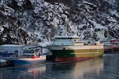 Fishers on Ice (Insearchoflight) Tags: sunset stjohns fishingboats eveninglight fishingvessels newfoundlandandlabrador insearchoflight nauticalphotos marinepics iceontheharbor fishersonice