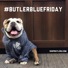"Happy #ButlerBlueFriday! Sporting a new quarter zip by Under Armour, now available at the @ButlerBookstore. #GoDawgs • <a style=""font-size:0.8em;"" href=""http://www.flickr.com/photos/73758397@N07/16638777666/"" target=""_blank"">View on Flickr</a>"