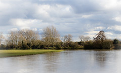 The Thames at Godstow (judy dean) Tags: water thames river oxford isis godstow portmeadow 2015 judydean sonya6000