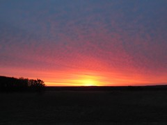 Sunrise (toepaintguy) Tags: morning sunset sun sunlight color nature field sunrise wonderful early spring amazing awesome incredible surprising enlightening