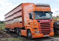 LEJ (fannyfadams) Tags: scaniar520 lejones haulage cattle a55 uk gaerwen anglesey northwales rseries v8