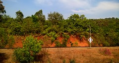 Red, blue and green (shuchismita_) Tags: travel blue red india holiday green station train goa backpack konkan