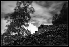 Curbar Edge # 1 (N .P) Tags: park trees england sky wind district peak cliffs national edge stonewalls xt1 cubar