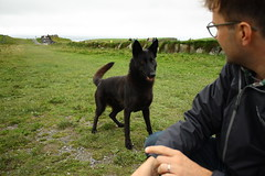 Cliffs of Moher (abbyef) Tags: cliffsofmoher countyclare ireland dog fetch eager
