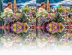 Riflessi -fiori (Bruno Zaffoni) Tags: mirror riflessi
