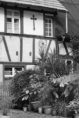 Gengenbach (horidole) Tags: gengenbach badenwrttemberg berndsontheimer fachwerk fachwerkhaus fenster
