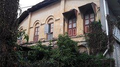 Flora Intrusion (Dex) Tags: georgetown penang malaysia architecture building flora floral plant heritage unesco