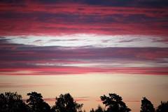 IMG_0003 (www.ilkkajukarainen.fi) Tags: taivas kaunis vrit colours threes puut
