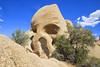 Skull Rock (Kansas Poetry (Patrick)) Tags: skullrock joshuatree joshuatreenationalpark nationalpark california patricknancydocalifornia patrickemerson