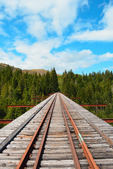 Vance Creek Bridge (Emily Grayston Photography) Tags: vancecreekbridge vancecreek train trestle railroad traintracks traintrestle railroadtracks heights views high trees canopy abandoned trespassing nikond3200 emilygraystonphotography washington washingtonstate pacificnorthwest pnw adventure vancecreekviaduct