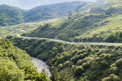 The life is happy in the Shire (dorablancoheras) Tags: green verde shire comarca lordoftherings happiness felicidad fields walking paseo ribeirasacra galicia life vida naturaleza nature verano summer canon ro river peace paz relax