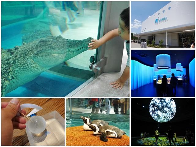 大阪旅遊.expocity.nifrel.海遊館.親子.動物園page