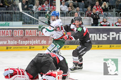 """DEL15 Kölner Haie vs. Augsburg Panthers 10.12.2014 064.jpg • <a style=""""font-size:0.8em;"""" href=""""http://www.flickr.com/photos/64442770@N03/15409647583/"""" target=""""_blank"""">View on Flickr</a>"""
