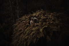 (Alessio Albi) Tags: portrait woman girl giant head 14 surreal conceptual titan 35 d600