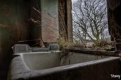 AN2-1 (StussyExplores) Tags: abandoned angus decay cottage explore laundry exploration derelict urbex rurex