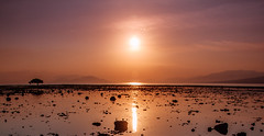 Sunset at Waijarang beach, Lembata island (syukaery) Tags: trip travel sunset sea vacation sun seascape tree film tourism beach indonesia landscape island nikon scenery rocks warm fuji shoreline velvia nikkor ntt lightroom emulation lembata 24120mm nusantara d700 eastnusatenggara vsco